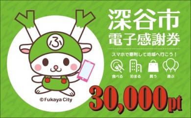 [№5674-0344]深谷市電子感謝券30,000pt