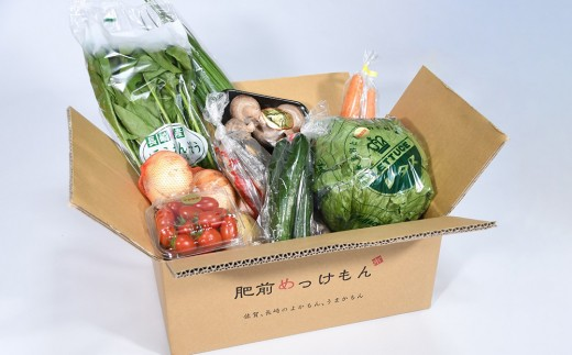 E-33  【6ヶ月お届け】肥前の国のお野菜定期便