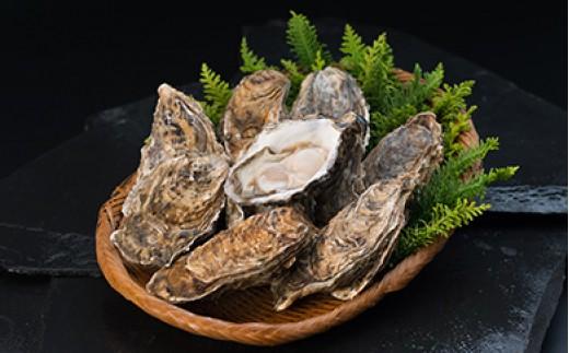 [Ka402-A113]【ぷりっぷりで濃厚!】釧路管内産【活】牡蠣(中)15個(カキナイフ付き)