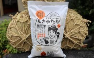 新米(30年産)すっごいもちもち  「しきゆたか」  玄米5kg【C001-C】