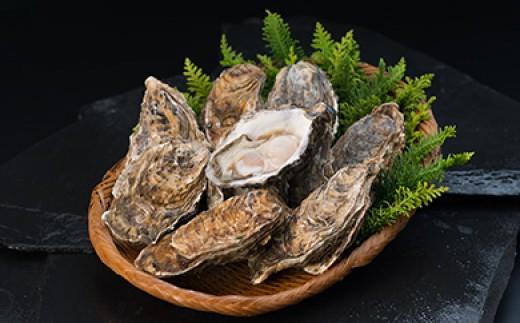 [Ka402-C078]【ぷりっぷりで濃厚!】釧路管内産【活】牡蠣(中)50個(カキナイフ付き)