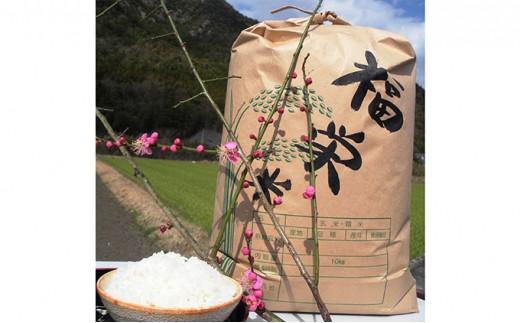 [№4631-1373]平成30年新米!! 高原さんの特別栽培米 福栄米 精米10kg