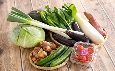 近江野菜詰め合せセット【K002-C】