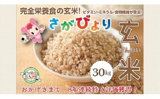 最高評価特A米「さがびより玄米」30㎏