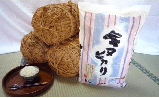 美里町のお米キヌヒカリ10kg【ソフトな食感でさっぱりとした口当たり】[0011-1001]