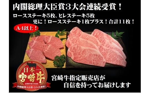 とろける旨味!【宮崎牛ヒレステーキ&ロースステーキセット】B-205
