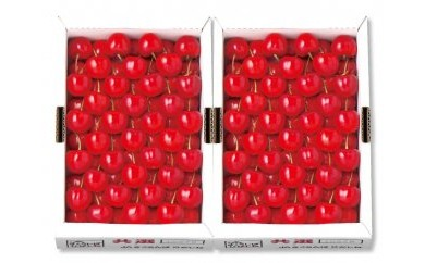 D023 山形県産 さくらんぼ(紅秀峰)特秀3Lサイズ700g×2 VN175-015