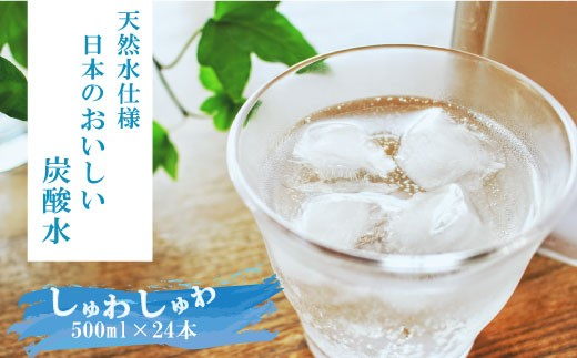 Z057.天然水使用の国産炭酸水(500mlペットボトル×24本)/限定50箱
