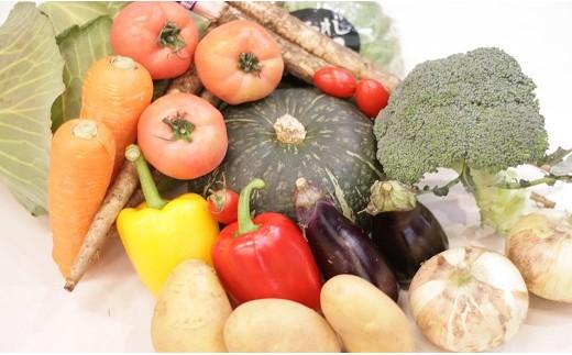 [№5803-0261]季節のお野菜詰め合わせ