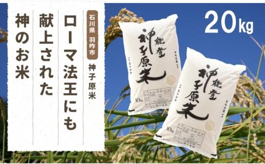 [A013] 神子原米10kg×2袋