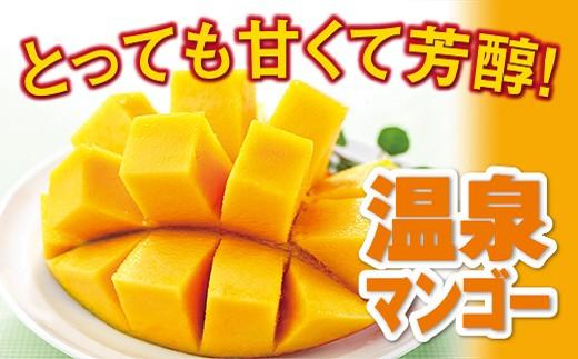 836 驚きの甘さ!温泉マンゴー(A品)