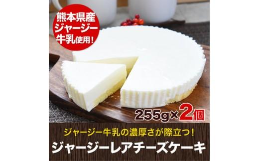 くまもとジャージーレアチーズケーキ2個セット《14営業日以内に順次出荷》熊本県 玉名郡 玉東町 レアチーズケーキ 洋菓子