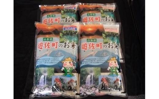 148 遊佐町産はえぬき+ひとめぼれセット20kg【6月発送】