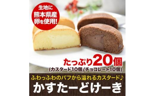 ふんわり♪かすたーどけーき たっぷり20個《14営業日以内に順次出荷》熊本県 玉名郡 玉東町 カスタードケーキ チョコレート