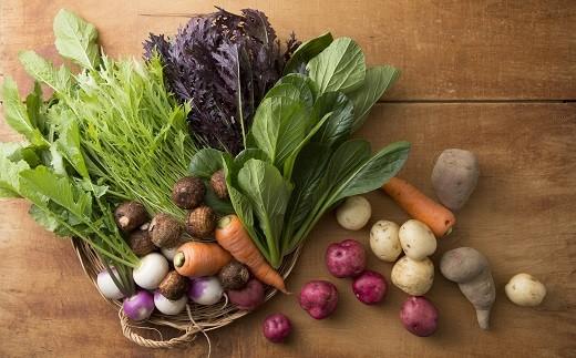 【C11】【年4回お届け】おかもファームのほっこり野菜セット4回分