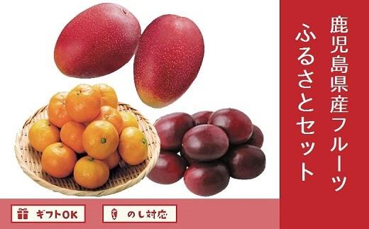 062-7-03 鹿児島県産フルーツふるさとセット