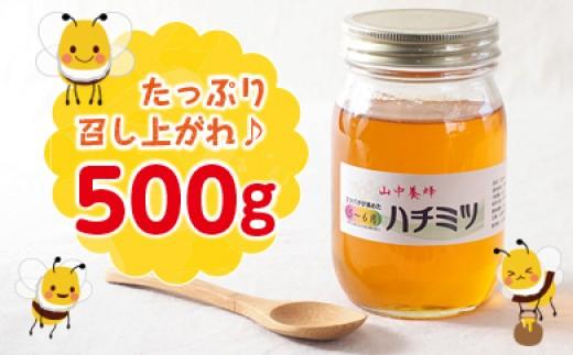 山中養蜂 はちみつ(5〜6月の花)【7月発送分】