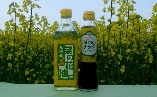 B-31 菜の花サラダ油と菜の花サラダドレッシング(各1本)
