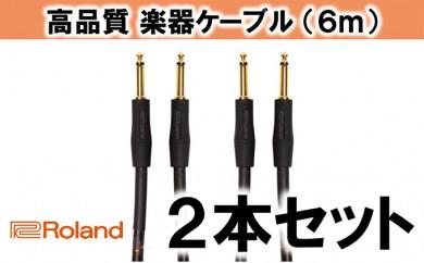 [№5786-2005]【Roland純正】高品質楽器ケーブル 6m/RIC-G20 2本セット