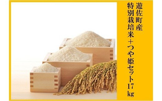 001 遊佐町産特別栽培米+庄内産つや姫セット17kg【7月発送】