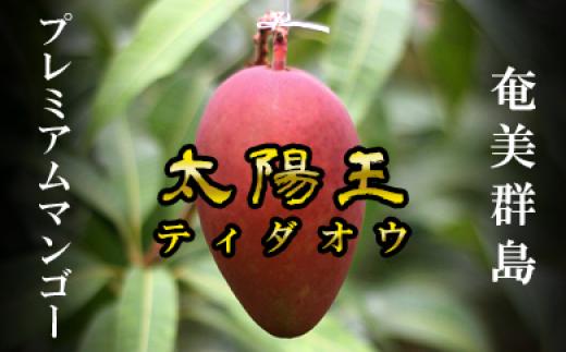 【予約受付開始】奄美群島プレミアムマンゴー 太陽王-ティダオウ-