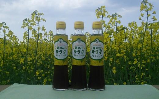 B-10 菜の花サラダドレッシング(3本)