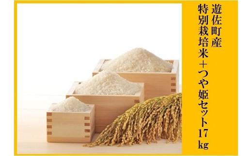 002 遊佐町産特別栽培米+庄内産つや姫セット17kg【8月発送】