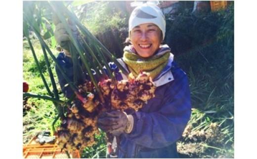 自然農法 冷凍すり下し生姜100g(小分け包装)20パック