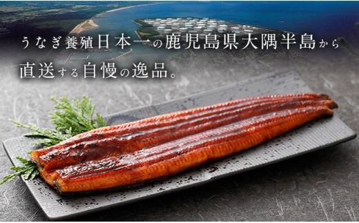 うなぎ養殖日本一の鹿児島県大隅半島から直送する自慢の逸品