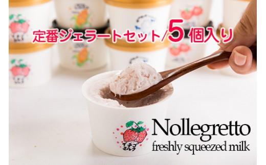 HMG322 アイス工房Nollegretto 定番ジェラートセット/5個入り