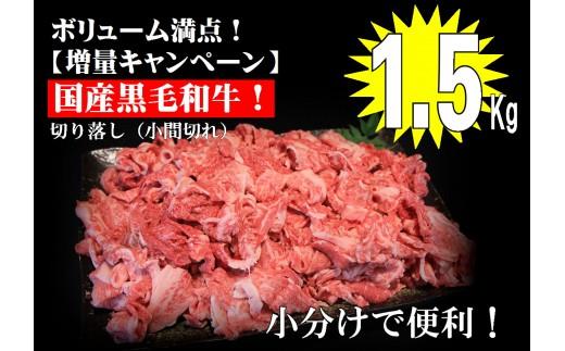 ドカンと1.5kg【国産黒毛和牛切り落とし】A-211