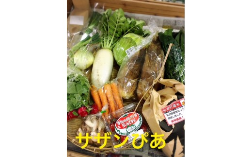 C-034 直売所(サザンぴあ)旬の野菜セット定期便