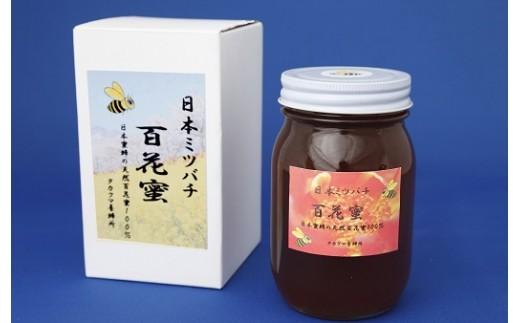 AA-022 日本ミツバチ 百花蜜600g