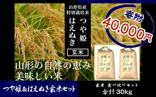 FY18-529 【山形県産2銘柄食べ比べ】 つや姫・はえぬき 玄米各15kg