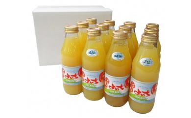 余市産りんごジュース味くらべ12本セット