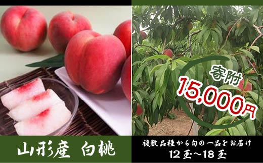 FY18-444 山形産 白桃 約5kg12~18玉