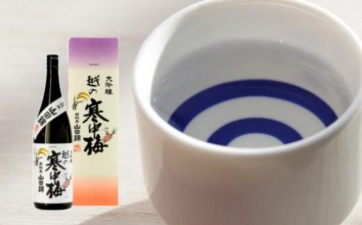 【B3012】越の寒中梅 山田錦 大吟醸720ml