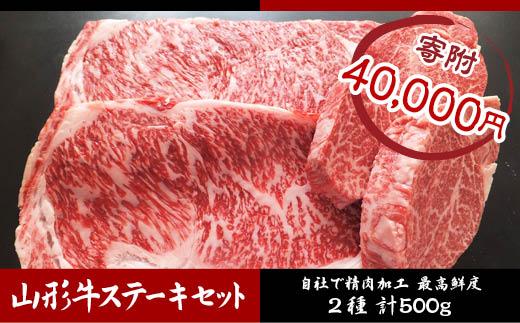 FY18-480 高橋畜産 山形牛ヒレ・ロースステーキセット (2種) 500g