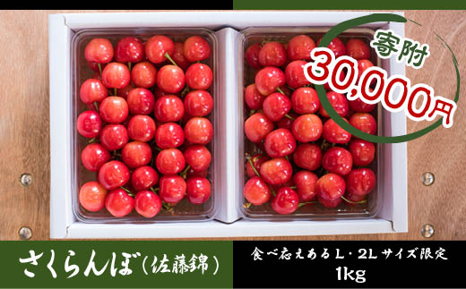 FY18-418 さくらんぼ (佐藤錦) 2L・L 並び1kg