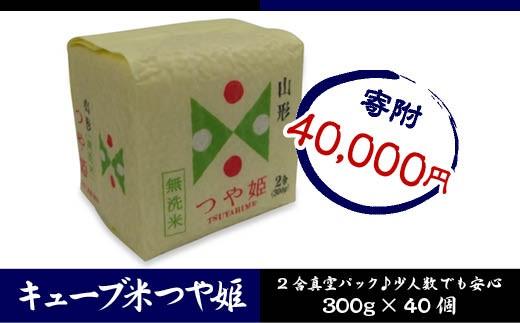 FY18-458 山形産 無洗米キューブ米つや姫300g×40個