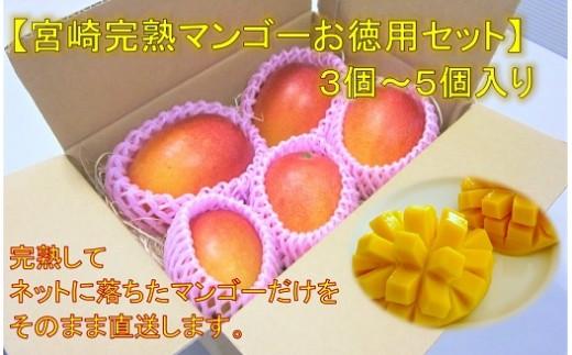 【宮崎完熟マンゴーお徳用セット】G-12