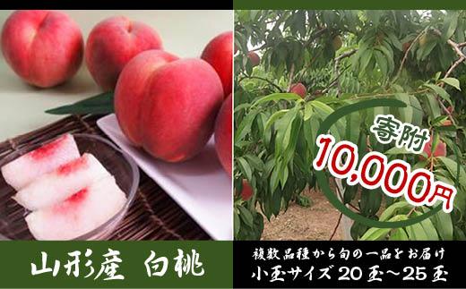 FY18-443 山形産 白桃小玉約5kg20~25玉