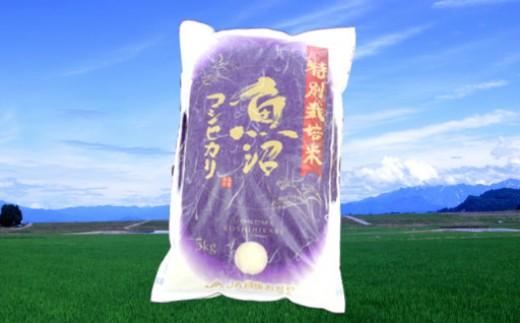 魚沼産コシヒカリ特別栽培米5kg