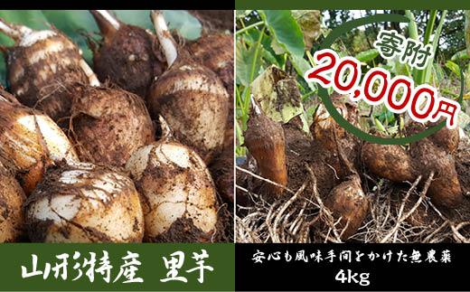 FY18-099 無農薬 山形特産 里芋4kg! (さといもやのおすすめ品)