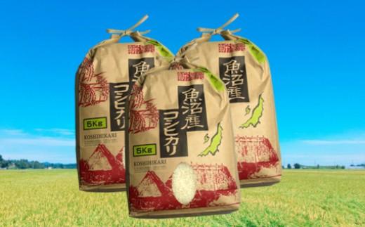 魚沼産コシヒカリ15kg(5kg×3袋)