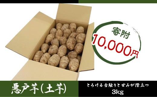 FY18-189 山形市村木沢産 伝統野菜 悪戸芋 (土芋) 3kg