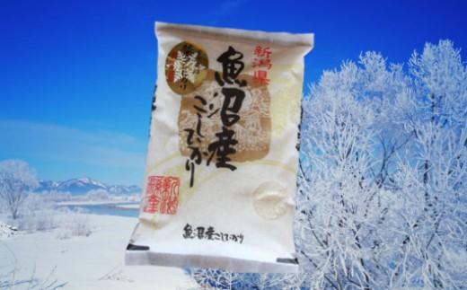 魚沼産コシヒカリ雪中貯蔵米3kg