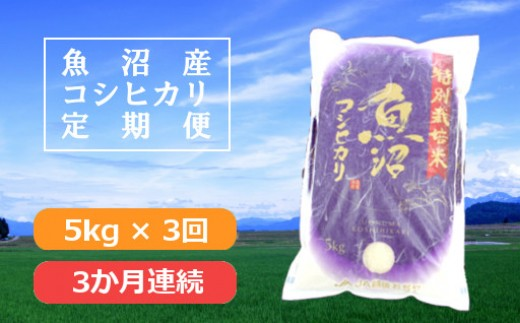 魚沼産コシヒカリ特別栽培米定期便5kg×3回(3か月連続お届け)