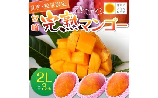 A251 夏季・数量限定!!究極の甘さ!!宮崎【完熟】マンゴー(2L×3玉)