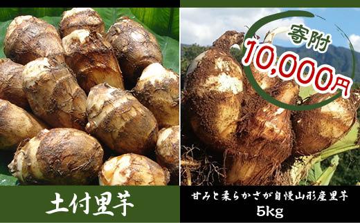 FY18-096 山形特産 土付里芋 5kg (特選クラス産地: 山形県産、品種:土垂)